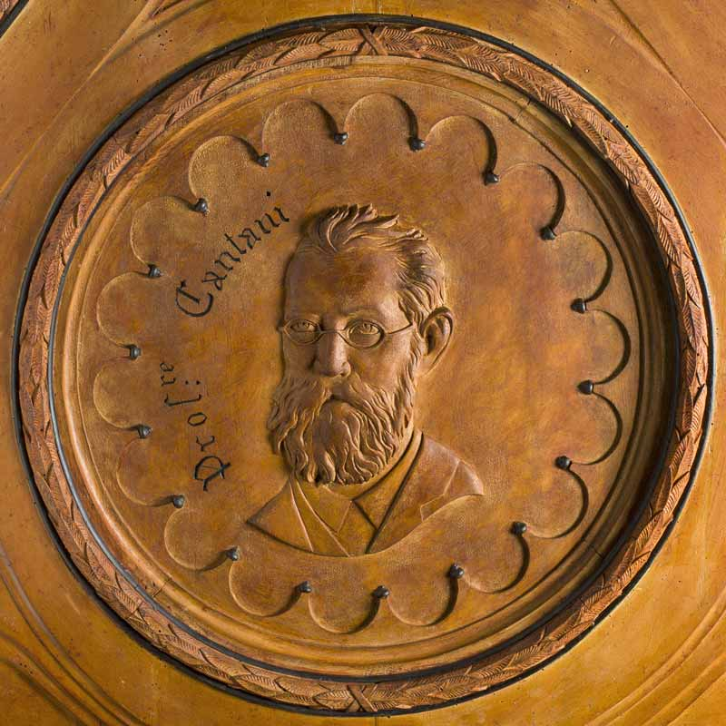 Wood carved portrait of italian scientist Arnaldo Cantani